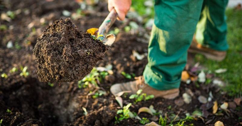 انواع خاک زراعی,انواع خاک های زراعی,خاک زراعی,
