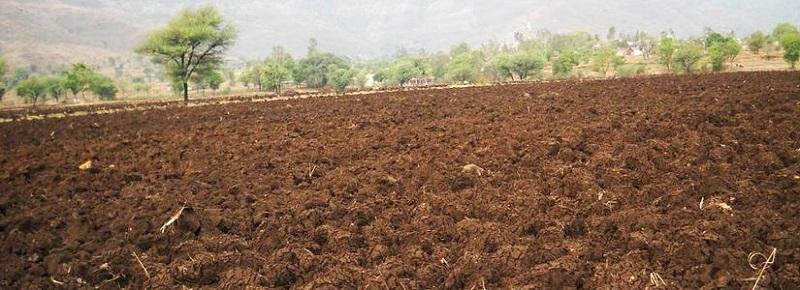 خاک شناسی فضای سبز,خاک فضای سبز,خاک مناسب برای فضای سبز,