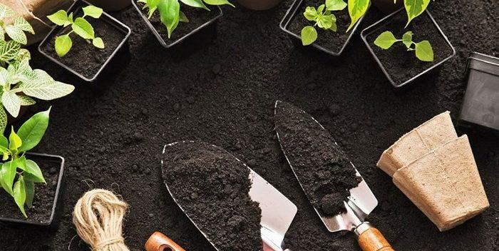 خاک برگ سیلیسی,خاک چمن,خاک گلدانی
